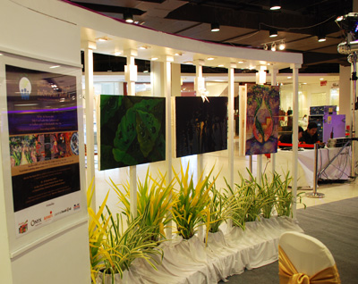 Exhibition in Pattaya